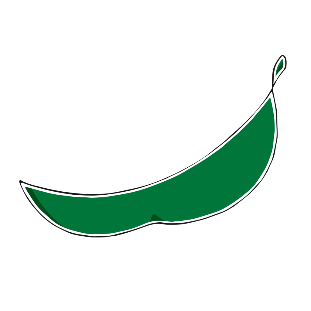 A cartoon graphic of an empty pea pod